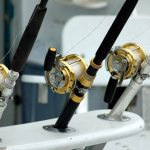 Best Small Saltwater Spinning Reel