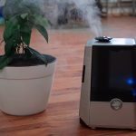 Best Air Purifier for Dorm Room
